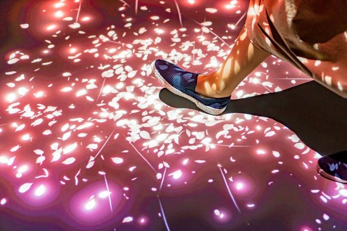 桜の絨毯の上を歩くと花びらが舞う/画像提供:オリックス株式会社