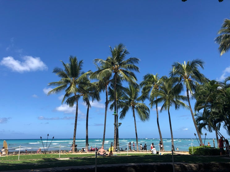 人気インスタグラマーのハワイ女子旅再び、日本人観光客がほぼ知らない注目和食店とは?