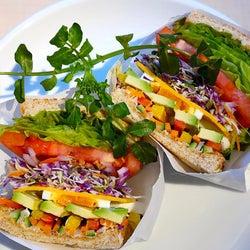 美しさを超えるおいしさ! 旬野菜15種類以上を贅沢に味わう、こだわりの「サンドイッチ専門店」