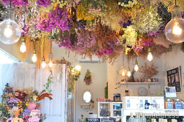 天井一面がカラフルな花で埋め尽くされたフォトジェニックな店内(C)モデルプレス