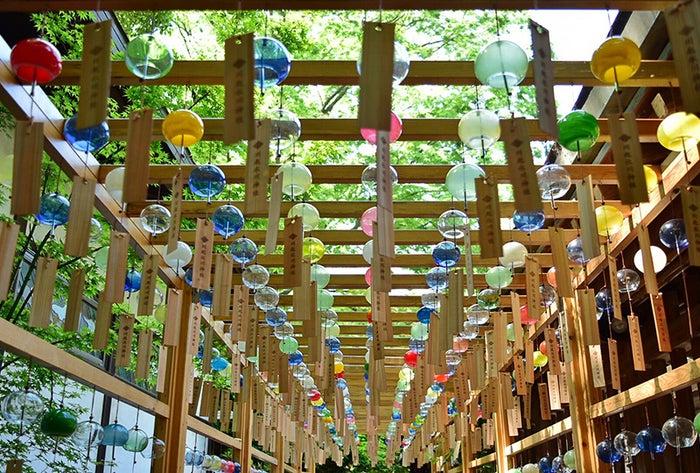 風鈴回廊/画像提供:川越氷川神社