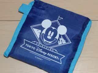 ディズニー、ワンコインのエコバッグが普段使いに最高 収納袋にまさかの機能も 『ボン・ヴォヤージュ』で販売されていたエコバッグがディズニーファン必見のアイテムだった。