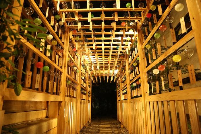 風鈴小路/画像提供:川越氷川神社