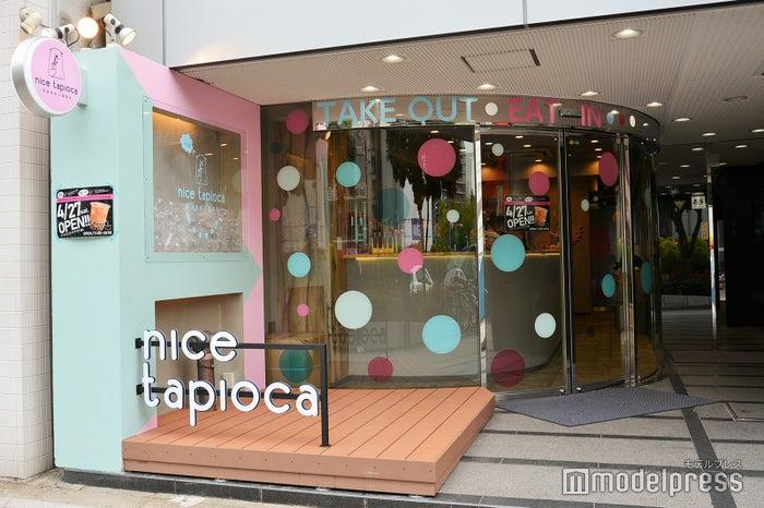 nice tapioca(提供写真)