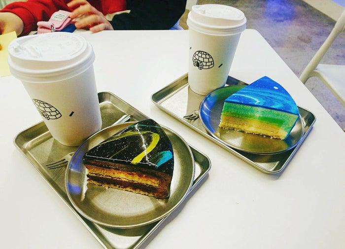 「柚子チーズケーキ」と「チョコケーキ」どちらも注文して食べ比べたい(提供画像)