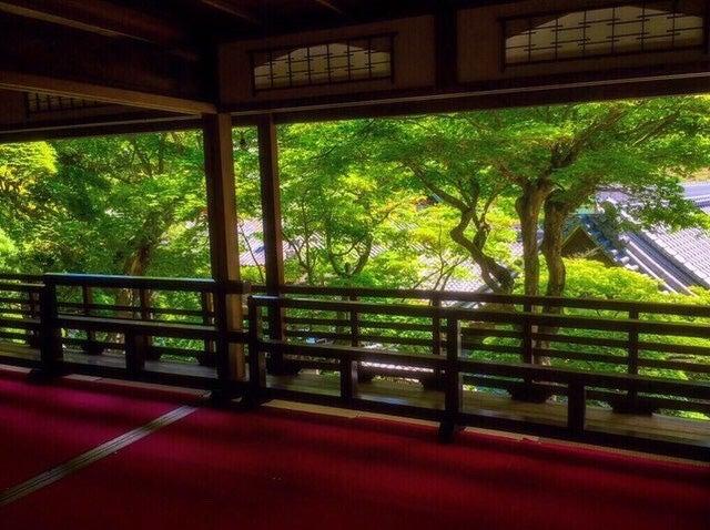 上書院からの眺め/画像提供:柳谷観音