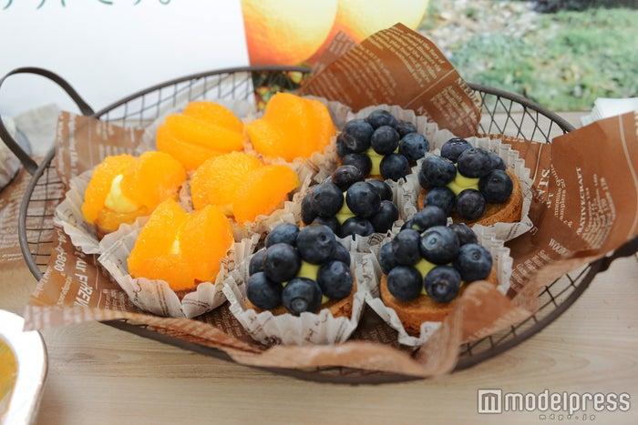 オレンジとブルーベリーのタルト/(C)モデルプレス