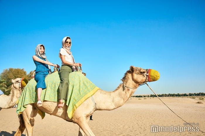 砂漠といえばラクダ乗りは外せない<br> ※バブ・アル・シャムス・リゾート&スパにて。(C)モデルプレス