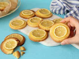 レモンをまるごとスイーツ作りに活用!クッキーにチーズタルトなど、レモンで作れる簡単スイーツレシピ3選