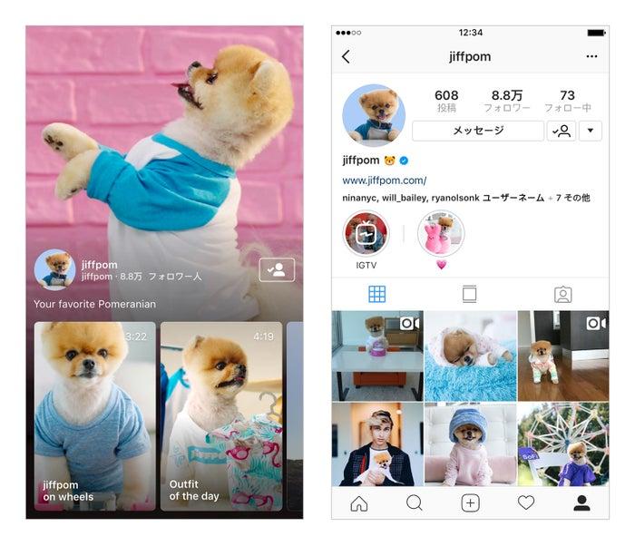 InstagramアプリからIGTVを楽しむことも可能 (提供画像)