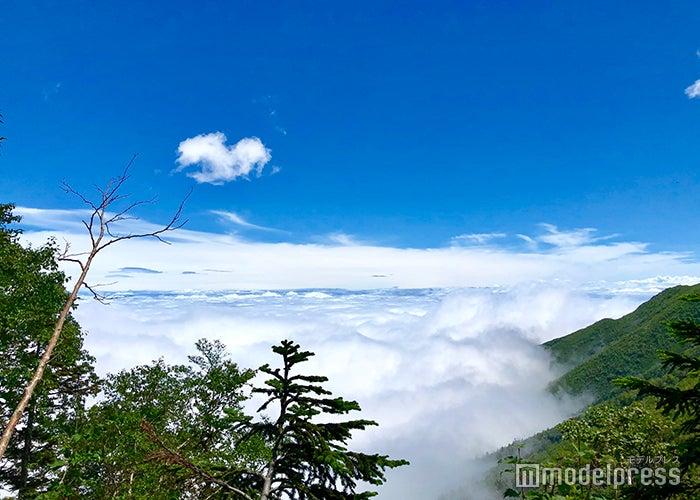 霧を抜けると雲の上に(C)ビューティーガール