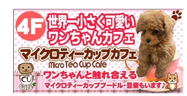 「マイクロティーカップカフェ」