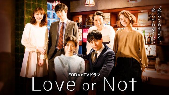 「Love or Not」(C)フジテレビジョン/エイベックス通信放送