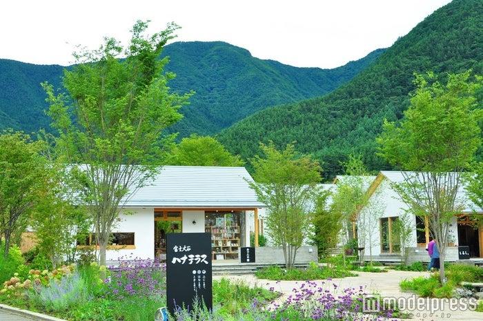 白を基調にしたシンプルで温もりのある建物と、ラベンダーなどの爽やかカラーの花々、青々とした山―。どこもかしこも最高のフォトスポットに(C)モデルプレス