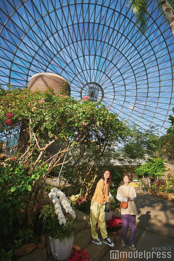 とっとり花回廊のメインドームである「フラワードーム」。日本最大の大きさ!(C)モデルプレス