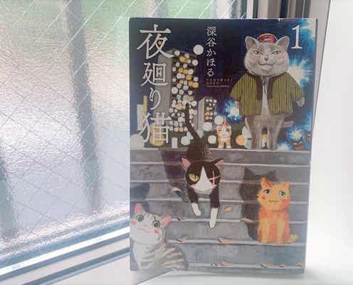 ひとりぼっちの夜に読みたい 孤独に寄り添ってくれる『夜廻り猫』