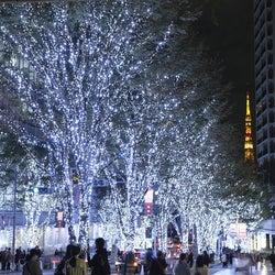 六本木ヒルズのクリスマス「Roppongi Hills Christmas 2019」イルミやマーケットで特別な冬を