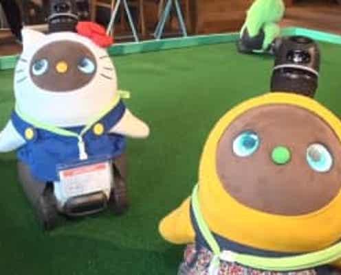 """""""ロボ友""""交流カフェが渋谷にオープン ロボットランにロボ見知り?「ロボットは家族」の新しい価値観"""