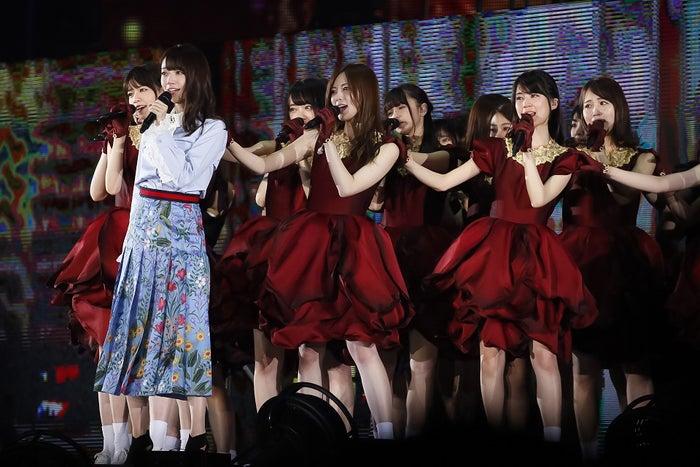 乃木坂46/画像提供:ソニー・ミュージックレーベルズ