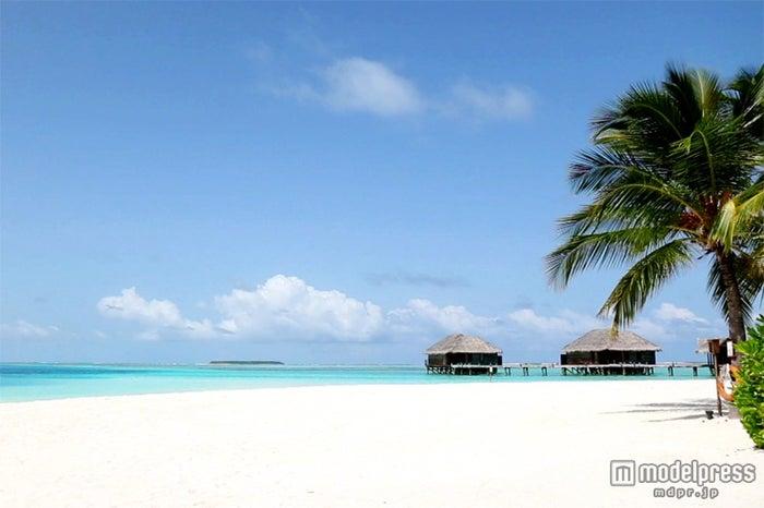 カップルが憧れる地上の楽園、モルディブのビーチ(C)NTV