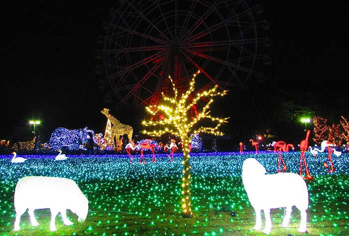 ウインターイルミネーション/画像提供:東武動物公園