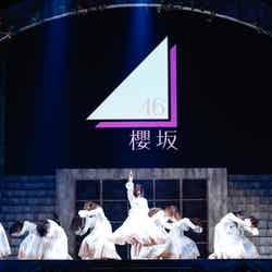櫻坂46/13日公演(提供写真/上山陽介)