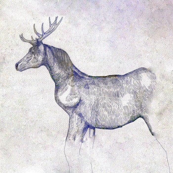 米津玄師「馬と鹿」(提供写真)