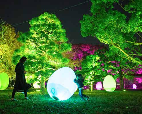 「ちばアート祭2021」チームラボの光のアート公開、外部の刺激で光や音が変化