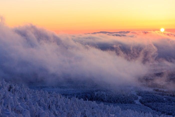 山頂の樹氷と夕暮れ(写真素材ぱくたそ/photo:あめまん)