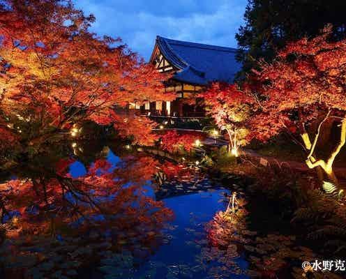 【京都】絶景…♡ 地元の人たちに愛される「紅葉隠れ名所」とは