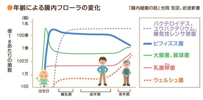 年齢による腸内フローラの変化