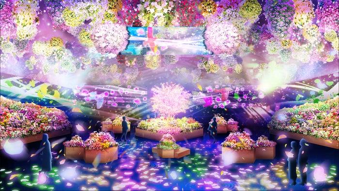 花とデジタルアートのコラボレーション/画像提供:よみうりランド
