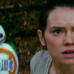 レイとBB-8(C)2015Lucasfilm Ltd.&TM.All Rights Reserved