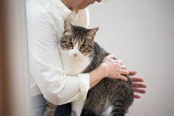 心がスッキリ♡猫が教えてくれた「人間関係」に悩まなくなる方法とは?