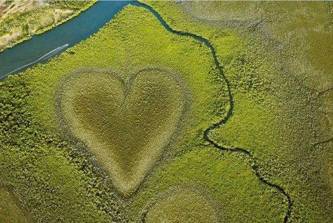 ニューカレドニアの「ヴォーのハート」/画像提供:ニューカレドニア観光局