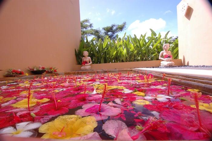 色とりどりの花々が浮かぶ、憧れのフラワーバス/お気に入りの水着を着て、カラフルな一枚をパチリ