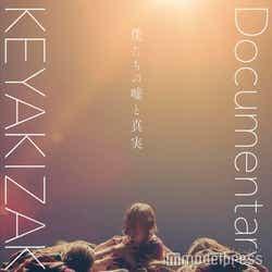 『僕たちの嘘と真実 Documentary of 欅坂46』ポスタービジュアル(C)2020「DOCUMENTARY of 欅坂46」製作委員会