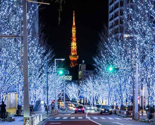 """六本木の冬の風物詩""""けやき坂イルミ""""クリスマスシーズンの街が""""SNOW&BLUE""""の輝きで満ちる"""