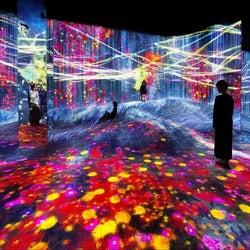 「チームラボボーダレス上海」開業、世界初公開含む約50の作品群