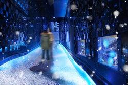 すみだ水族館で「雪とクラゲ」の新展示、浮遊するクラゲと都会の雪景色が調和