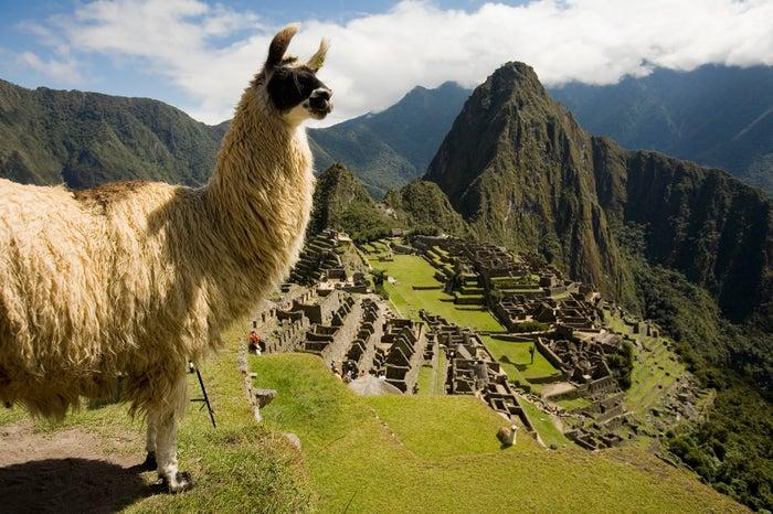 ペルーの世界遺産マチュピチュ/画像提供:ペルー政府観光庁