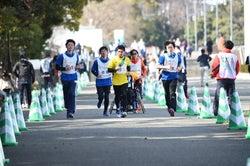 Fischer'sザカオ/提供:日本財団パラリンピックサポートセンター