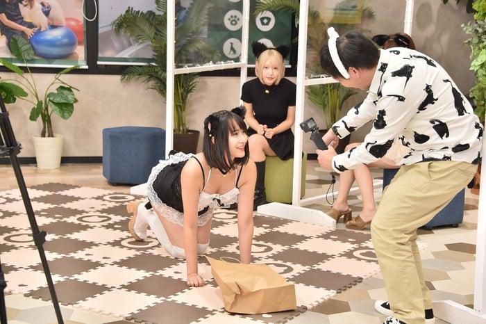 白雪りら、森田哲矢 (C)テレビ大阪