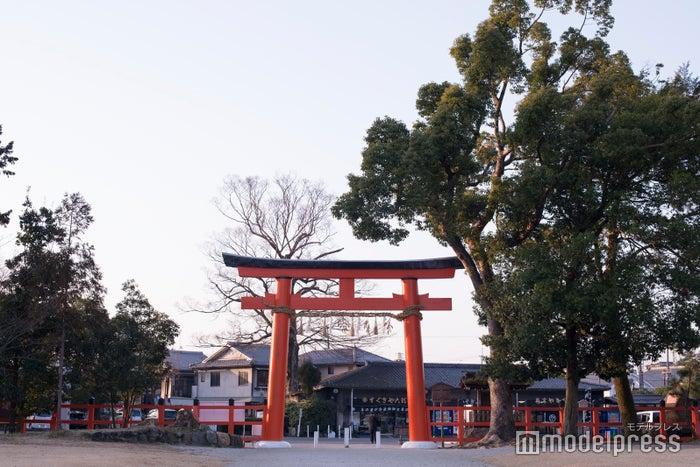 上賀茂神社(C)モデルプレス