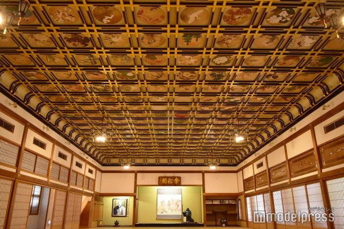 156畳もある「傘松閣」の間。団体参拝者の宿泊体験の場としても使用されています。こんなにも美しい広間で就寝すれば、身も心も清まりそう(C)モデルプレス