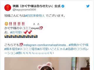橋本環奈のネコ耳姿にキュン死!『かぐや様は告らせたい』写真に反響