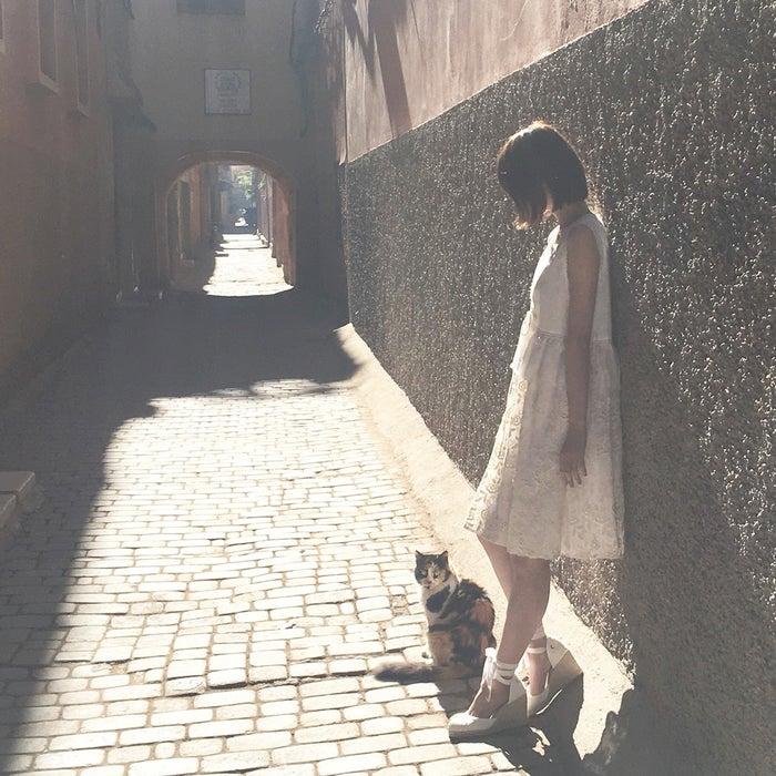猫と戯れる西野七瀬/オフショット(提供写真)