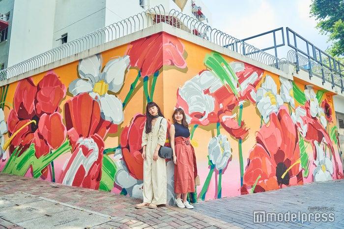 湾仔エリアの学校の壁に描かれた、紅い花々のグラフィティーアート。フランス人アーティストによって描かれ、<br> 2019年3月に完成したばかり。(C)モデルプレス