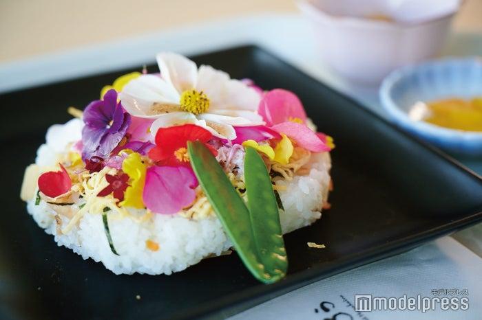 レストラン花かいろうの「花ちらし」がフォトジェニックで可愛い!(C)モデルプレス
