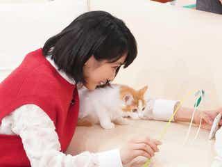"""松本穂香、猫と一緒に自撮りに挑戦 """"待て""""はできる?"""
